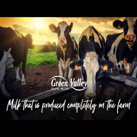 Green Valley Dairies
